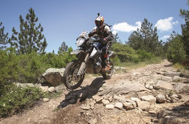 KTM 790 ADVENTURE R P2 in action.jpg